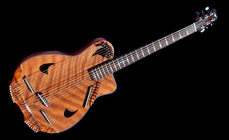Rich Mermer 6 String Bass Baritone Thinline Harp Guitar At Music